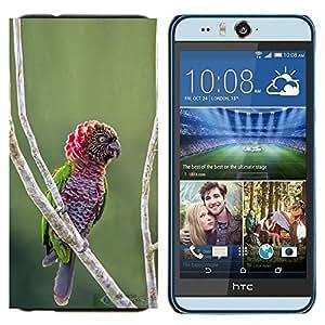 EJOOY---Cubierta de la caja de protección para la piel dura ** HTC Desire Eye M910x ** --Parrot Jungle tropical naturaleza pájaro ramificación