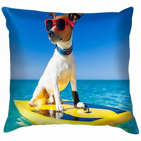 Chou_Joo_Home Perro Surfing en Tabla de Surf con Gafas de ...