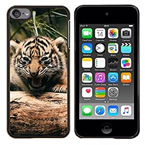 Caucho caso de Shell duro de la cubierta de accesorios de protección BY RAYDREAMMM - Apple iPod Touch 6 6th Touch6 - Tigre lindo bebé