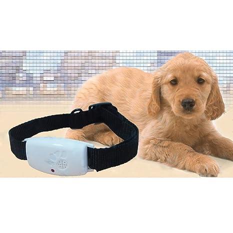 eizur mascotas perros gatos por ultrasonido Pest Repeller Collar anti pulgas garrapatas Prevención Herramienta de eliminación