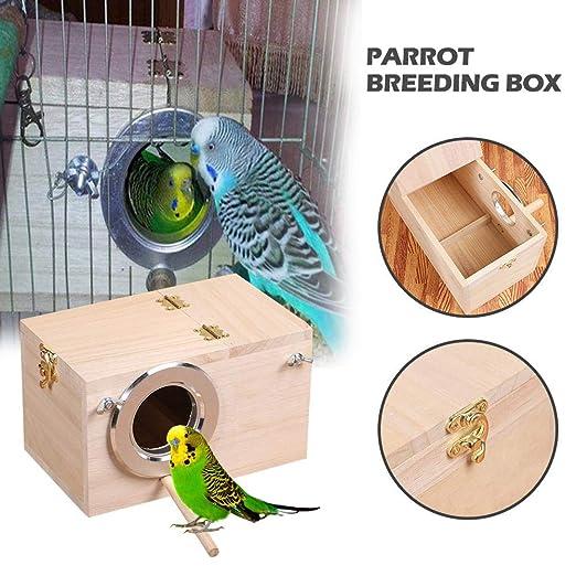 Adminitto88 - Pájaros de Madera con Loro, Caja de Nido de ...