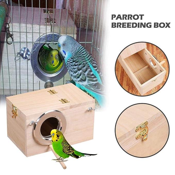 Adminitto88 - Pájaros de Madera con Loro, Caja de Nido de pájaro ...