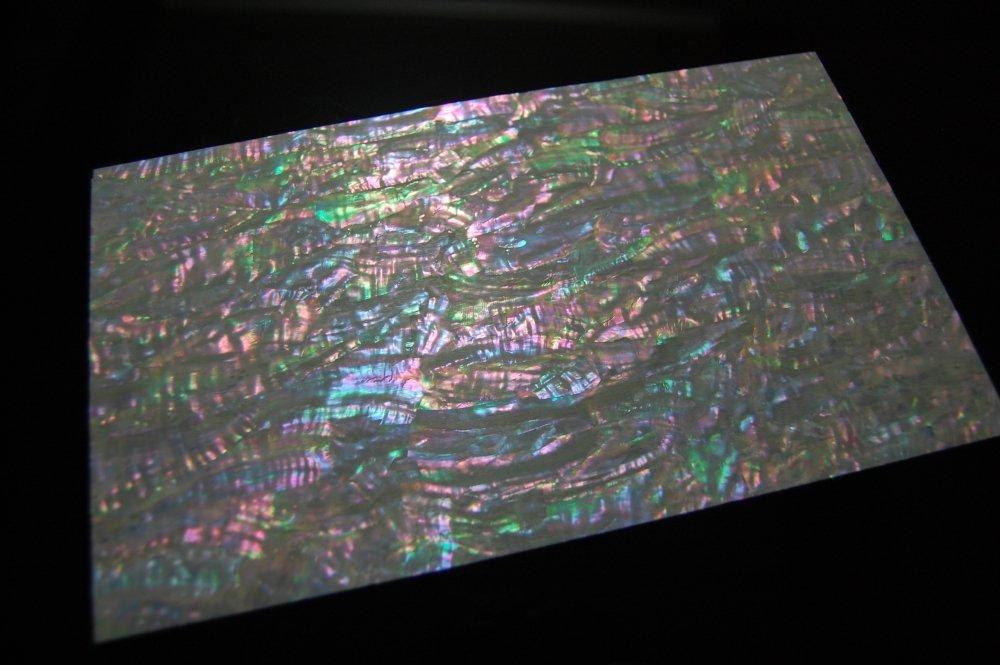 Prism Abalone Wide Veneer Sheet