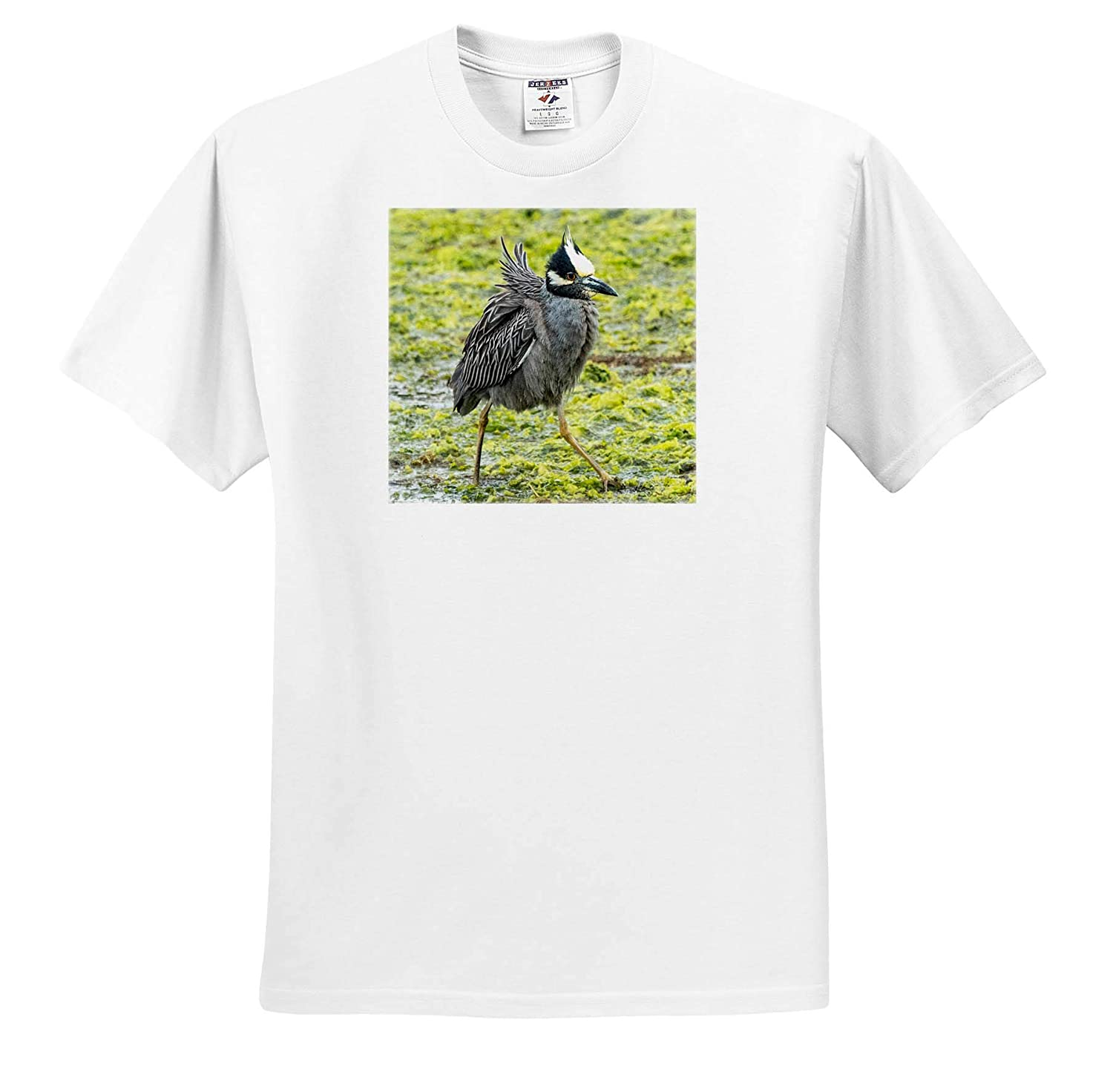 3dRose Roni Chastain Photography Yellow Crowned Night Heron T-Shirts