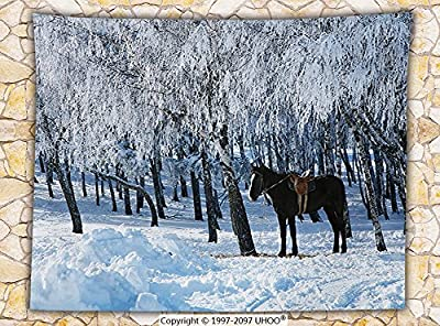 Equestrian Decor Fleece Throw Blanket Horse between Trees in Winter Forest Frozen Woods Icy Land Nature Picture Throw Brown White