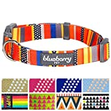 Inspired by nautical flags, this fabulous designer collar will make your furry friends a super pup star. Designed to embrace bold and vibrant colors, your furry friend will be surrounded with tropical passion and creative pattern. Those bright patter...