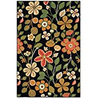 Safavieh Four Seasons Collection FRS427D Hand-Hooked Black and Multi Indoor/ Outdoor Area Rug (4 x 6)