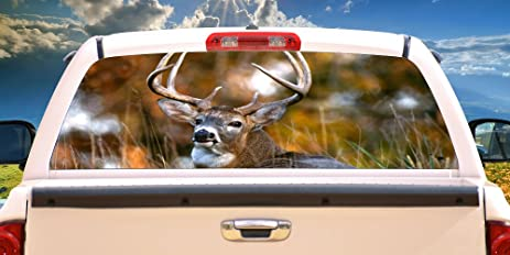 Amazoncom DEER Rear Window Graphic Back Truck Decal Suv View - Rear window hunting decals for trucksamazoncom truck suv whitetail deer hunting rear window graphic
