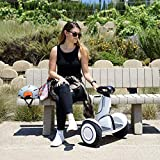 Segway Ninebot S-Plus Smart Self-Balancing Electric Scooter with Intelligent Lighting and Battery System, Remote Control and Auto-Following Mode, White, Ninebot S Plus, Large