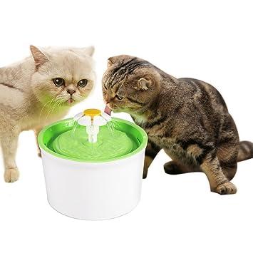 GOTOTOP Automático Fuente de Agua Eléctrico Mascota Perro Gato Filtro de Bebida de Agua: Amazon.es: Productos para mascotas
