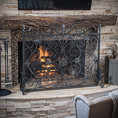 - Great Deal Furniture 295449 Darcie Black Brushed Silver Finish Wrought Iron Fireplace Screen,