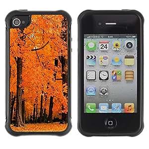 Suave TPU GEL Carcasa Funda Silicona Blando Estuche Caso de protección (para) Apple Iphone 4 / 4S / CECELL Phone case / / Nature Orange Woods /