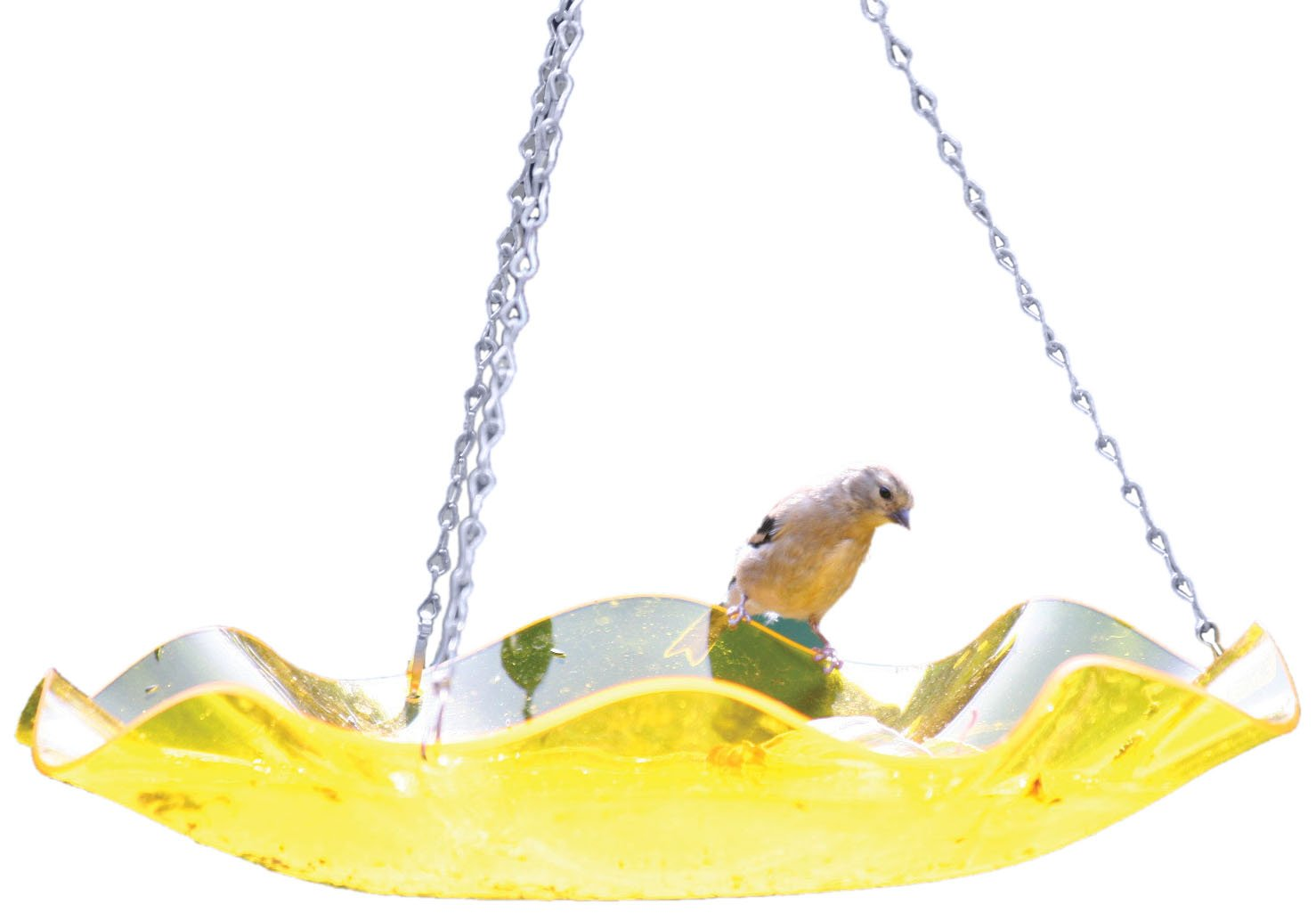 Birds Choice Hanging Acrylic Bird Bath, Yellow Bird' s Choice AAH216