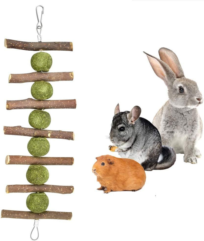 Hamster Bunny Chew Toys for Teeth, Organic Pet Snacks Apple Wood Sticks Tree Branch with Grass Balls and Double Head Suspension for Small Pets Accessories Hamster Chinchilla Guinea Pigs Rabbit