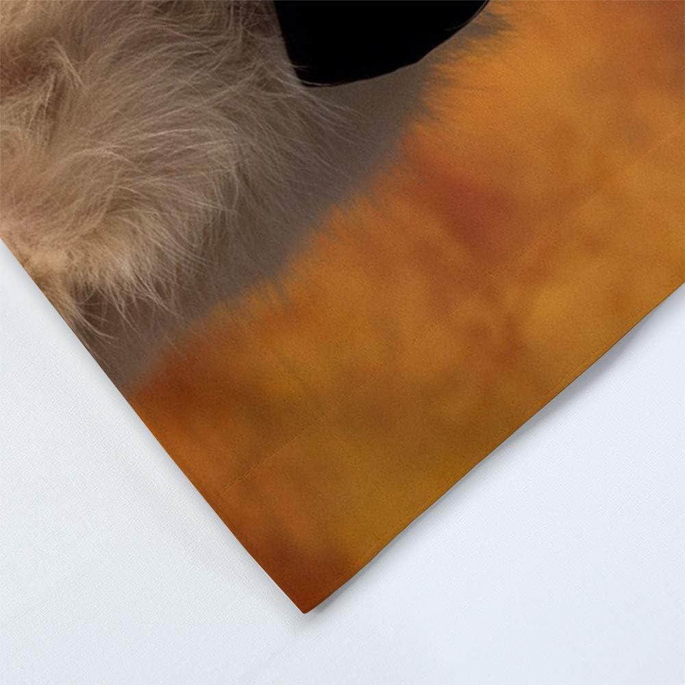 Fille Gar/çon 3D Animal Rose Mariage Housse de Couette pour lhiver Lautomne /Ét/é Sticker superb /Él/égant Marron Blanc Chien Chiot Parures de Lit avec Taie doreiller 140x200cm