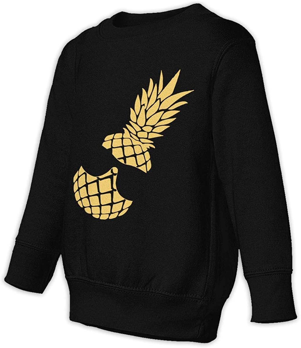 wudici Pineapple Boys Girls Pullover Sweaters Crewneck Sweatshirts Clothes for 2-6 Years Old Children