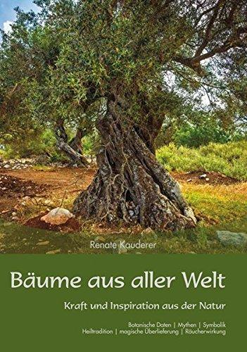Bäume aus aller Welt: Kraft und Inspiration aus der Natur