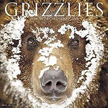 2018 Grizzlies Wall Calendar