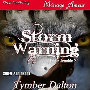 Storm Warning Hörbuch
