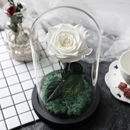 Diy Decorations Eternal Flower Gift Box Roses In Glass Mask