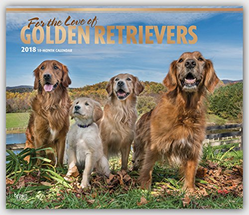 For The Love Of Golden Retrievers 2018 14 X 12 Inch Monthly Deluxe Wall Calendar With Foil Stamped Cover, Animal Dog Breeds (Multilingual Edition)