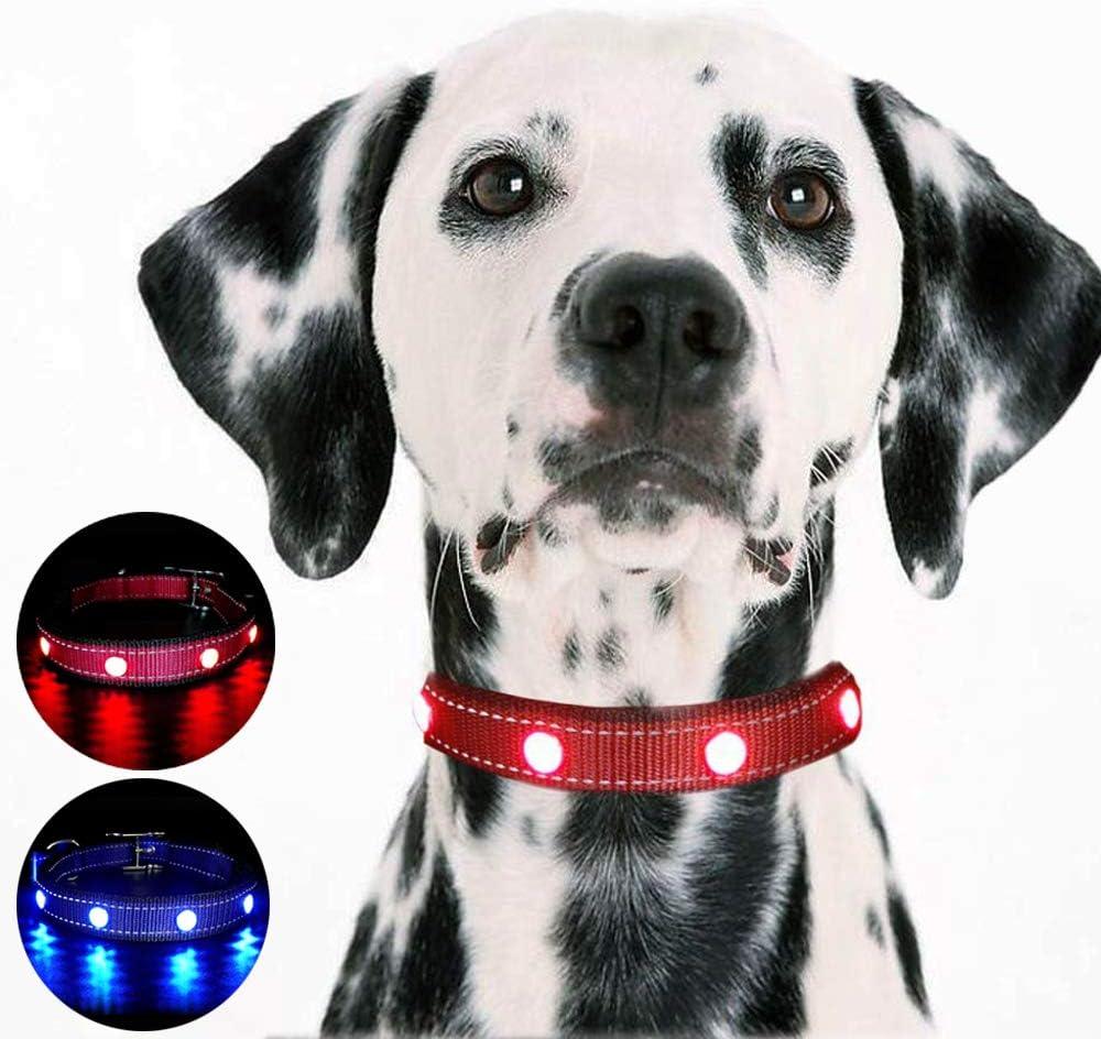 MASBRILL Collar de Perro LED Hecho a Mano USB Recargable Impermeable Brillante de Piedras Preciosas Resplandor Collar de Perro Noche de Seguridad (M (por 24-66 lbs), Rojo)