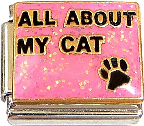 (All About My Cat Pink Italian Charm)