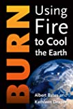 Burn: Igniting a New Carbon Drawdown Economy to End the Climate Crisis