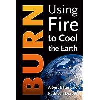 Burn: Using Fire to Turn Down the Heat
