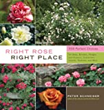 Right Rose, Right Place, Peter Schneider, 1603424385