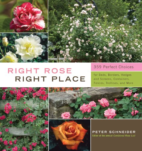Right Rose, Right Place: 3509 Perfect Choices for Beds, Borders, Hedges, and Screens, Containers, Fences, Trellises, and (Rose Garden Design)