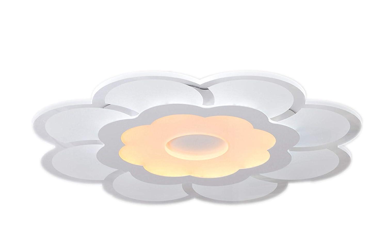 Woward LED Deckenleuchte aus Plexiglas Design; LED Deckenlampe von 16W bis 48W   Lichtfarbe  warmweiß + kaltweiß (29W   Lampe  PB-4229   nicht dimmbar)