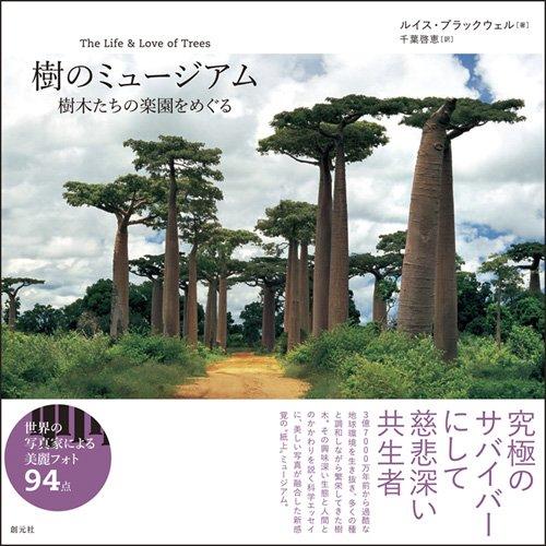 樹のミュージアム: 樹木たちの楽園をめぐる