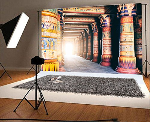 Laeacco 7x5FT Vinyl Backdrop Photography Background Egyptian Stone Pillar Art Color Wall Drawing Mural Ancient Egyptian Writing Photo Backdrop Majestic Scene TV or Video Shoot -