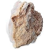 American Educational Snowflake Obsidian Igneous Rock (Pack