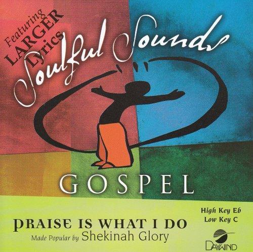 Praise Accompaniment Worship - Praise Is What I Do [Accompaniment/Performance Track]
