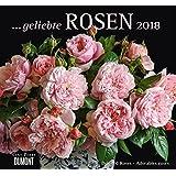 Geliebte Rosen 2018 – DUMONT Wandkalender – mit allen wichtigen Feiertagen – Format 38,0 x 35,5 cm
