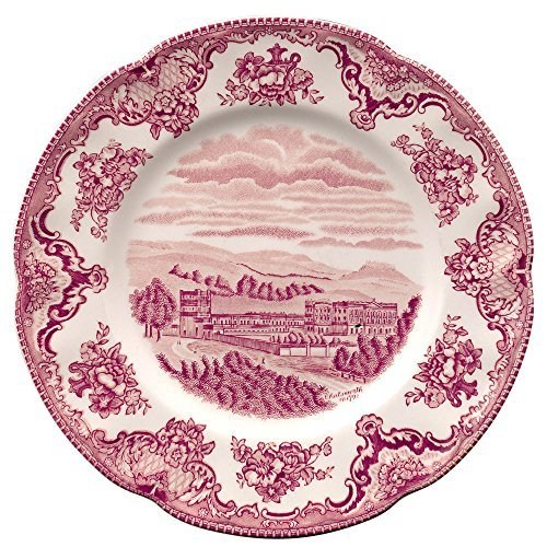 (Johnson Brothers Dinnerware Old Britain Castles Pink 8 Salad Plate A4256201003 by Johnson)