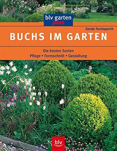 Buchs im Garten: Die besten Sorten Pflege · Formschnitt · Gestaltung (blv garten plus)