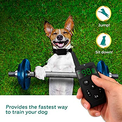 AllNew 2019 Dog Training Collar with Remote  Long Range 1600 Shock Vibration Control Rechargeable