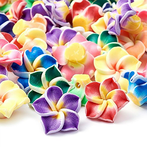 Kissitty 200-Piece Random Mixed Color Handmade Polymer Clay 3D Plumeria Flower Spacer Loose Beads 15x8mm with Holes 2mm for DIY Jewelry Craft Making (Jewelry Porcelain Cameo Pendant)