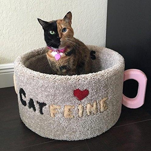 Cat Bed Catfeine Cup