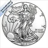#3: 2018 No Mint Mark American Silver Eagle W/Custom Flip $1 US Mint Brilliant Uncirculated