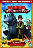 Dragons: 2 New Adventures - Gift Of The Night Fury [DVD]