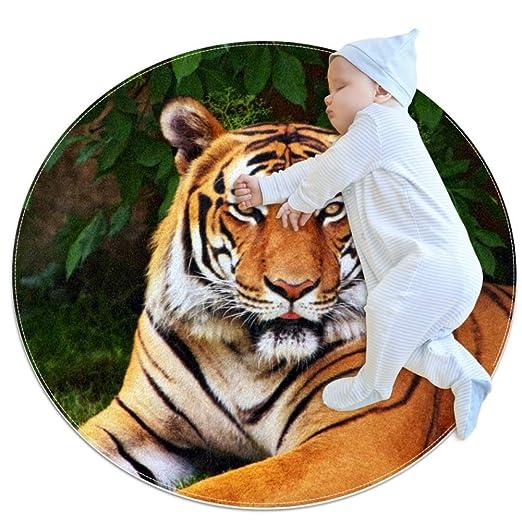 Desheze Tigre Alfombra Redonda Alfombra Suave para ...
