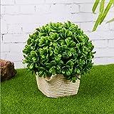 Creative simulation hemisphere wheat grass green plastic decorative ornaments bonsai , 3