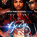 Torn Between a Goon and a Gangsta Audiobook by Jade Jones Narrated by Carl Atkins