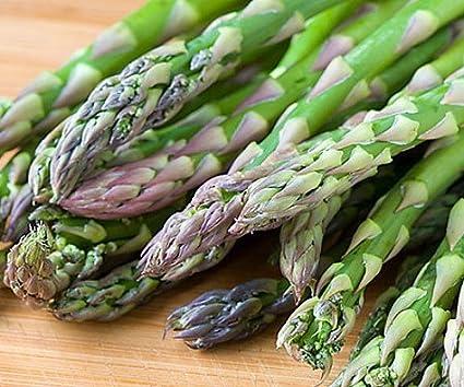 Asparagus in garden