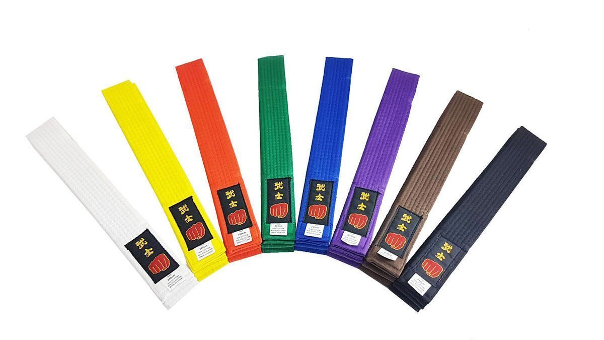 Karate Belt Martial Arts Taekwondo Judo Kickboxing Ju-Jitsu Shotokan All Colours Longford Store UK
