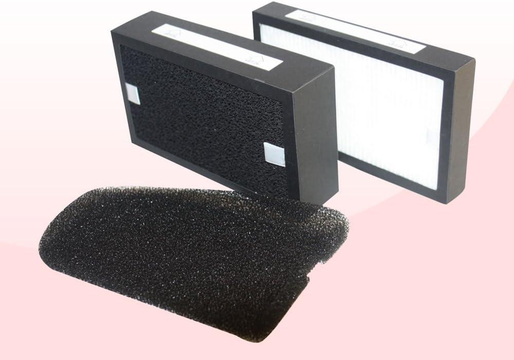 PURLINE Filtro Pur 405AIRE HEPA para Purificador PL3000: Amazon.es ...